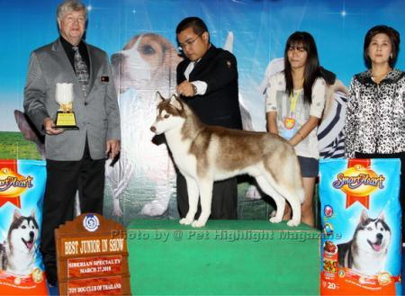 Best Junior In Show TDCTH Siberian Husky Specialty 2010